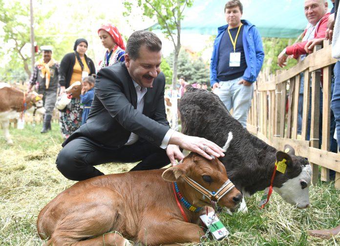Koronavirüs salgınıyla mücadele sürerken Balıkesir Büyükşehir Belediye Başkanı Yücel Yılmaz, tarımsal ve hayvansal desteklemelerini artırdı. Türkiye'yi doyuran il Balıkesir'in üretmeye devam etmesinin önemli olduğunu söyleyen Başkan Yücel Yılmaz üreticilere,