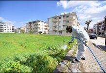 Altıeylül Belediyesi Park ve Bahçeler Müdürlüğü'ne bağlı ekipler Altıeylül İlçesi'nde yabani otlara karşı mücadele başlattı.